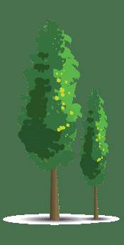 arbre-footer-
